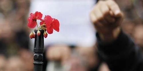 fleur-fusil